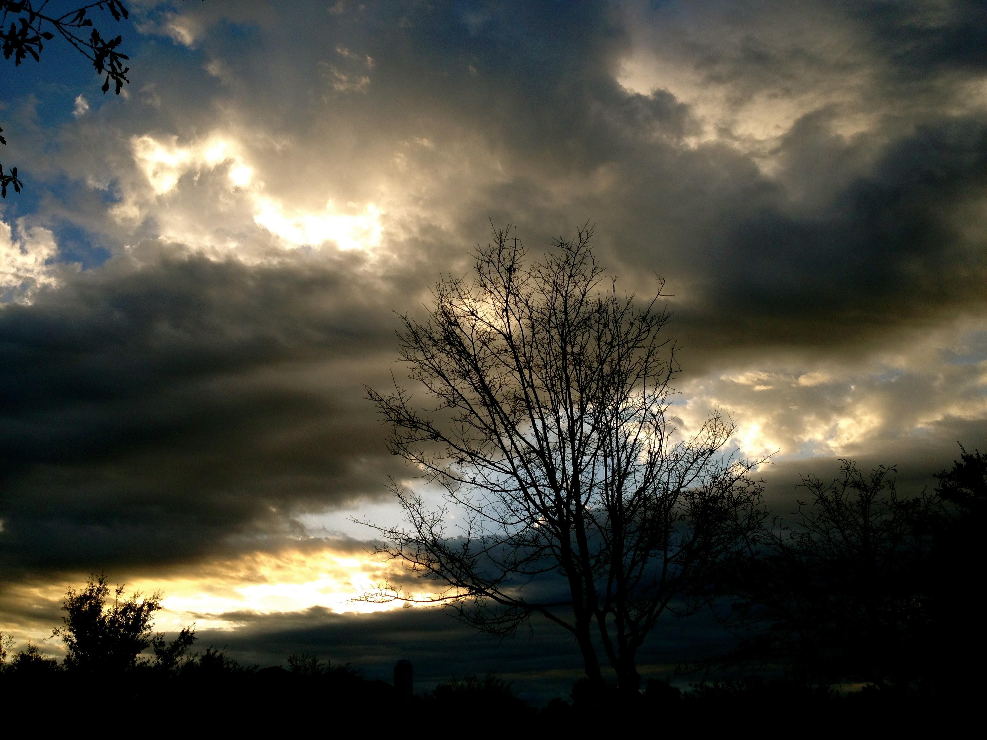 creepy night sky MHHS