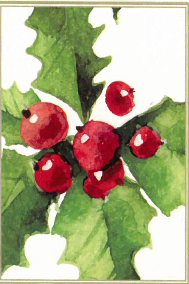 Watercolor of holly from Christmas card