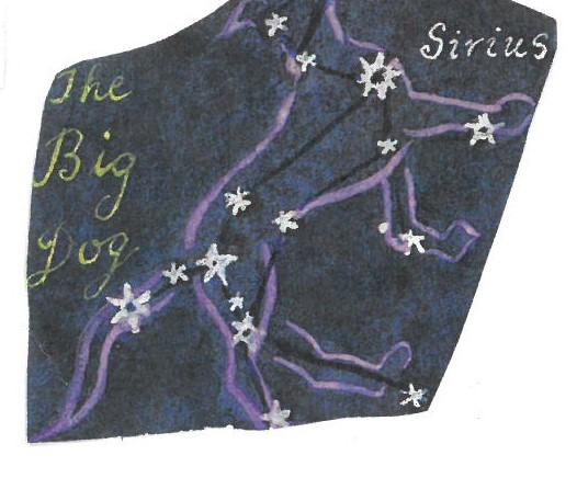 Sirius in the Big Dog